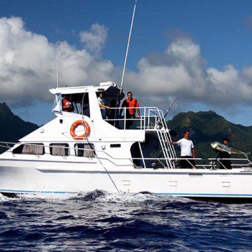 Akura Fishing Charters
